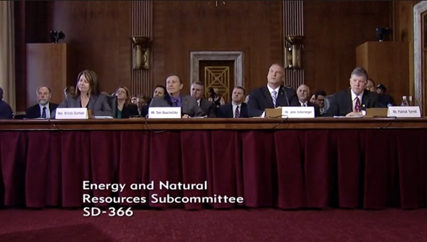 3.27.2019 Senate Energy and NR Subcomittee hearing